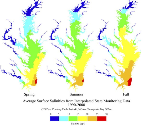 ChesBay_salinity_seasons_600.jpg